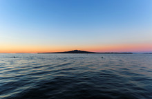 Rangitoto Island In Dusk, Auck...