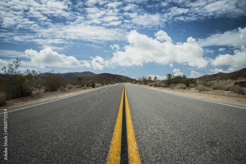 USA, California, road in Joshua Tree National Park