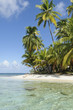 Panama, San Blas Islands, desert island, beach with palms