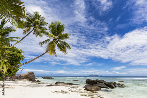 Seychelles, Silhouette Island, Beach La Passe, Presidentel Beach, palm with hammock