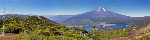 Volcano Llaima at Conguillio N.P. (Chile) - panoramic view Canvas Print