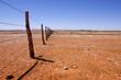 canvas print picture - Fenceline in Outback Australia