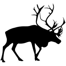 Reindeer Silhouette Vector Gra...