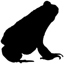 Toad Silhouette Vector Graphics