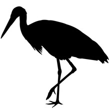 Whooping Crane Silhouette Vect...