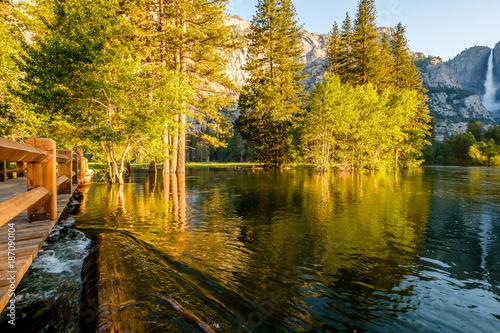Poster Miel Merced River and Yosemite Falls landscape