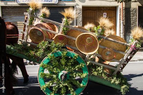 Fotografie, Obraz  SELARGIUS, ITALIA -  SETTEMBRE 14, 2014: Antico sposalizio selargino, carro trad