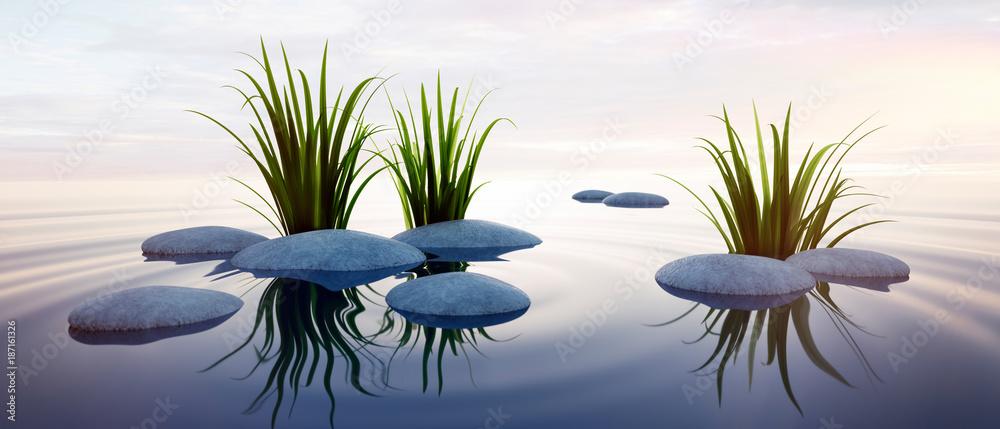 Fototapety, obrazy: Steine mit Gras im See 3
