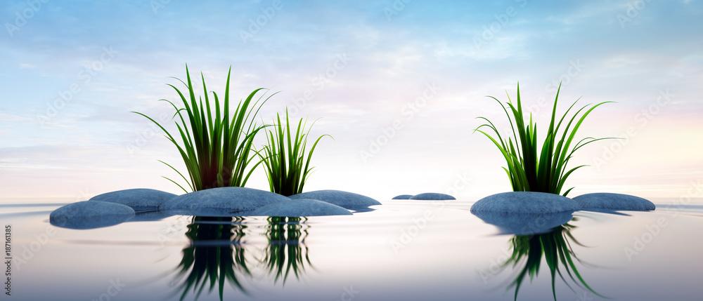 Fototapeta Steine mit Gras im See 2