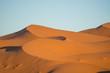 広大なサハラ砂漠