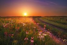 Wah'Kon-Tah Prairie Sunset With Wildflowers