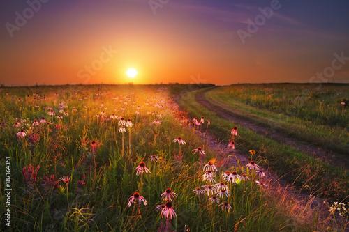 Recess Fitting Deep brown Wah'Kon-Tah Prairie Sunset with Wildflowers