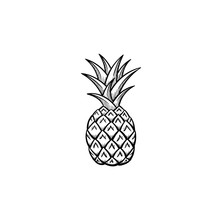 Vector Hand Drawn Pineapple Ou...
