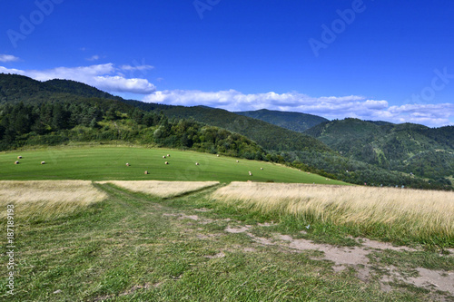 Countryside natural landscape.