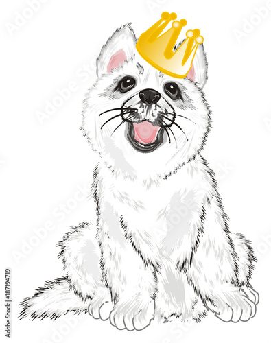 Poster Croquis dessinés à la main des animaux Husky, White Husky, Dog, Puppy, Friend, Pet, Illustration, White Dog, Furry Dog, White Puppy, Husky Puppy, year of dog, yellow, gold, crown