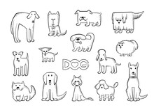 Vector Set Of Different Dog Br...