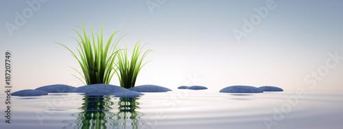 Steine mit Gras im See 1 Slika na platnu