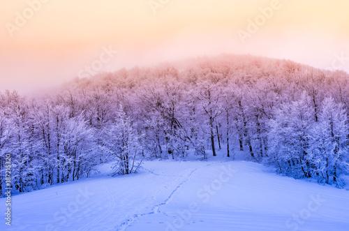 zimowy-las-gorski-w-sniegu-zachod-slonca-bieszczady-polska
