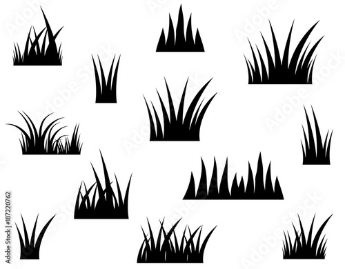 Photo  Black vector grass silhouette on white background
