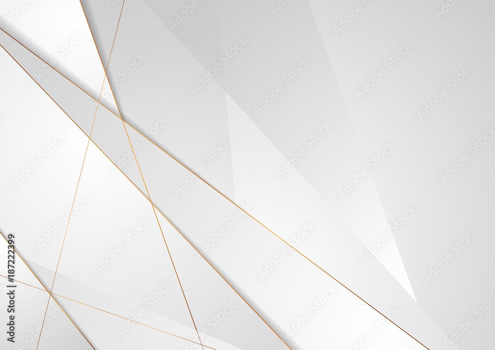 Fototapeta Grey silver abstract luxury background with bronze outlines