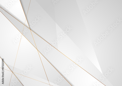 Fototapeta Grey silver abstract luxury background with bronze outlines obraz