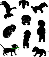 Silhouettes Of Dachshunds. Vec...