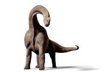 Brachiosaurus Altithorax Dinos...