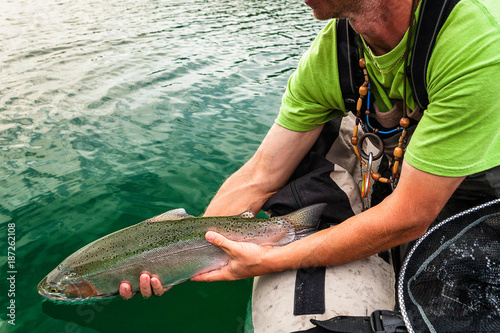 Releasing of Rainbow trout back to water, Slovenia Canvas Print