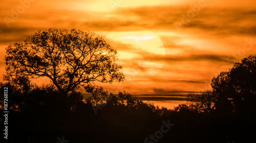 Sunrise in the nature background