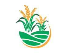 Paddy Wheat Icon Agricultural ...