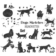 Funny Dogs Sketches