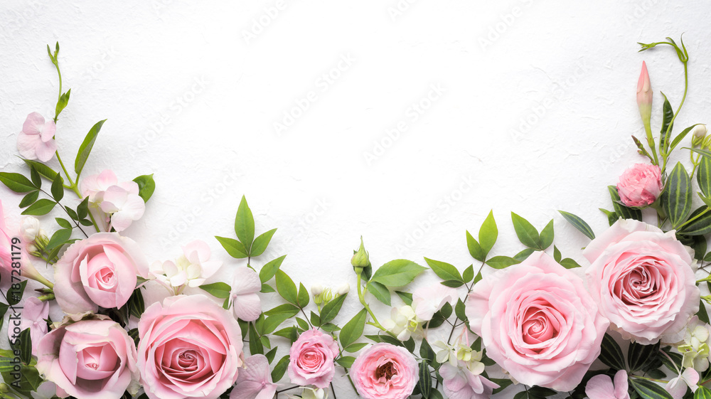 Fototapety, obrazy: Rose flower with leaves frame