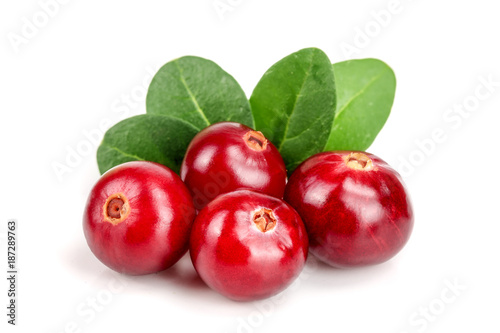 Fotografia  Cranberry with leaf isolated on white background closeup macro
