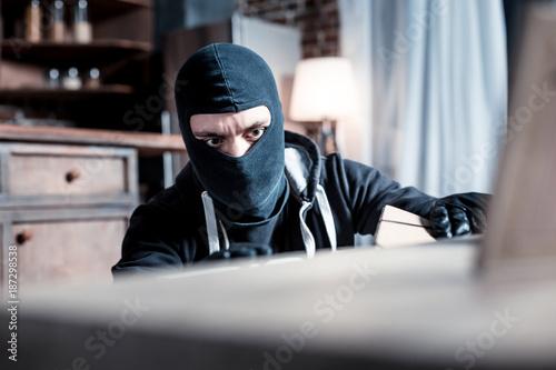 Obraz na plátně Robber