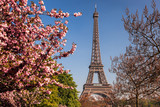 Fototapeta Wieża Eiffla - Eiffel Tower with spring trees in Paris, France