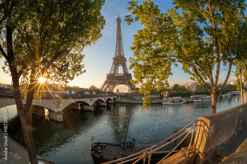 Fototapeta Eiffel Tower during sunrise in Paris, France