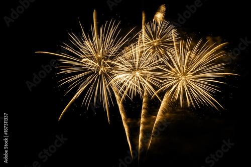 Cuadros en Lienzo Golden firework on black