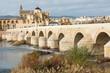 Footbridge Puente Romano Gate Bridge and Cathedral of Cordoba.