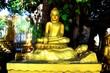 Golden Buddha statue in Cambodia.
