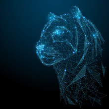 Abstract Image Of Tiger In The Form Of A Starry Sky Or Space, Consisting Of Points, Lines, And Shapes In The Form Of Planets, Stars And The Universe. Vector Head Of Animals. RGB Color Mode