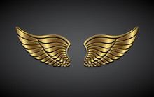 Wings From Gold On A Gray Back...