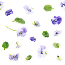 Seamless Pattern Of Purple Blu...