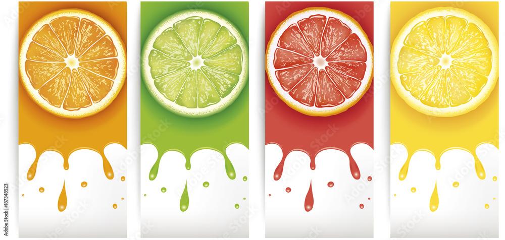 Fototapeta lime, lemon, orange, grapefruit juice with slices