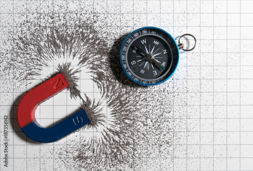 Red and blue horseshoe magnet or physics magnetic and compass with iron powder magnetic field on white paper graph background. Scientific experiment in science class in school.