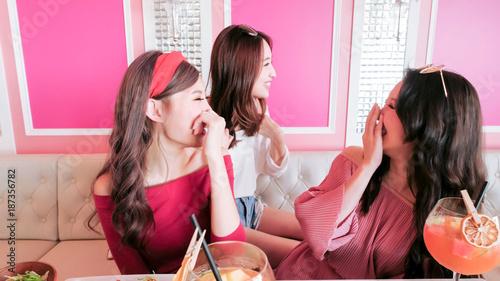 Fotografie, Obraz  women chatting in restaurant
