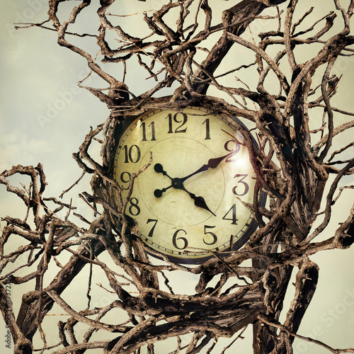 Poster Surrealism Nature and Time