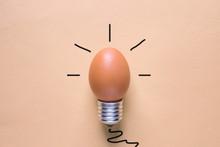 Light Bulb Egg Shell On Base Concept  Energy Saving