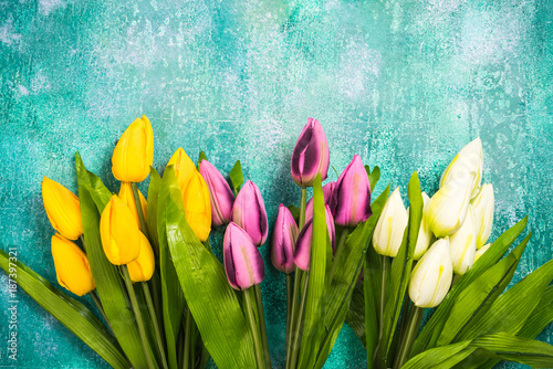 Foto op Plexiglas Tulp Vibrant tulips on concrete background,card template