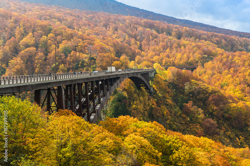 Jogakura Bridge at Aomori prefevture in autumn season Canvas Print