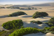 Sand Dunes South Australia